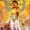 Nhac -Chu Dai Bi- (Co Chu, Tieng Phan) (HD) (Tri 21 Lan) (Rat Hay)