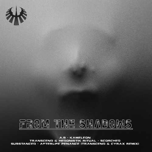 Transcend & Hedonistik Ritual - Scorched
