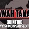 Quintino - Bawah Tanah (YoSuPk Remix)