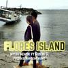 FLORES ISLAND REAGE RUSLIN G.L FT MITHA AENCIK