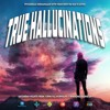 True Hallucinations 077 @ Dice Radio - Full On Timewarp