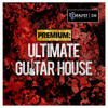 Catalyst Samples - Premium: Ultimate Guitar House