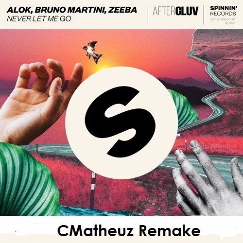 Baixar Alok, Bruno Martini, Zeeba - Never Let Me Go (CMatheuz Remake)