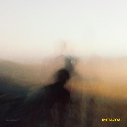 Weval - Metazoa