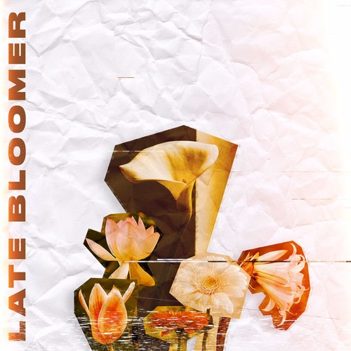 Late Bloomer (Produced by Amati)