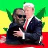 Reggae Song