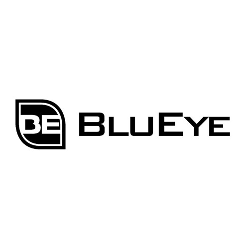 Nitrous Oxide feat. Aneym - Follow You (BluEye Bootleg) Free Download