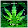 Mandinka Warrior - Herbalist (F.A.B Remix)