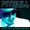 Pitbull   Give Me Everything