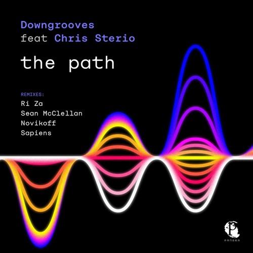The Path (Ri Za Remix) - Pangea