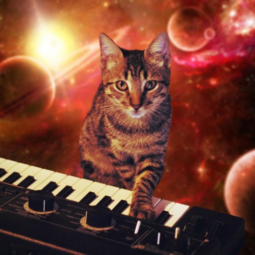 A CAT IN SPACE