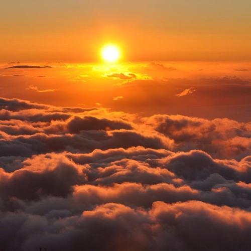 Goodnight Sun