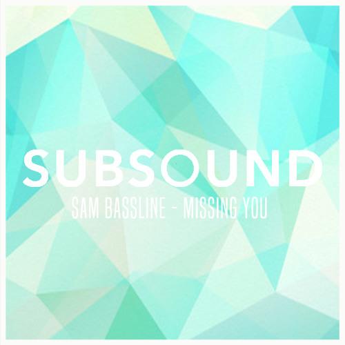Sam Bassline - Missing You