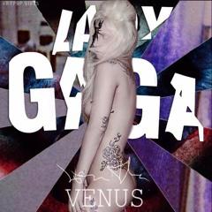 Venus (radio Version)
