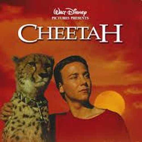 Episode 12 - Cheetah