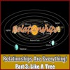 Relationships Are Everything - Pt3 Like A Tree