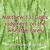Matthew 13: God's judgment on the wheat & tares