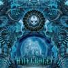 Spirit Molecule & Metaform - Hyperborea 205