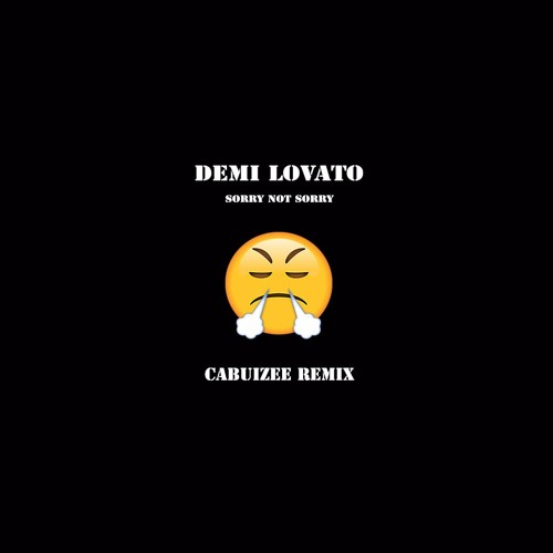 Demi Lovato - Sorry Not Sorry (Cabuizee Remix).mp3