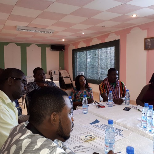 Cameroon community media network encourages peace journalism