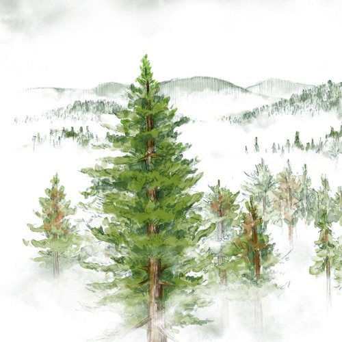 Saving redwoods from climate change
