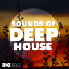 Sounds Of Deep House | 1,2 GB Of Construction Kits, Drums, Melodies & Presets!