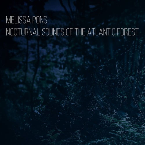 Nocturnal Sounds of the Atlantic Forest - the pond