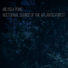 Nocturnal Sounds of the Atlantic Forest - ceasing the afternoon