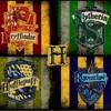014: As casas de Harry Potter e o mundo real