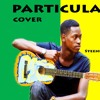 Major Lazer -PARTICULA Acoustic Cover By Steenie Dee