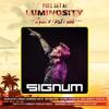 Signum @ Luminosity Beach Festival Bloemandaal 2017-06-25 Artwork