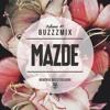 Buzzzmix Vol. 41 - Mazde