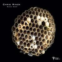 Chris Rinox - Black Wasp