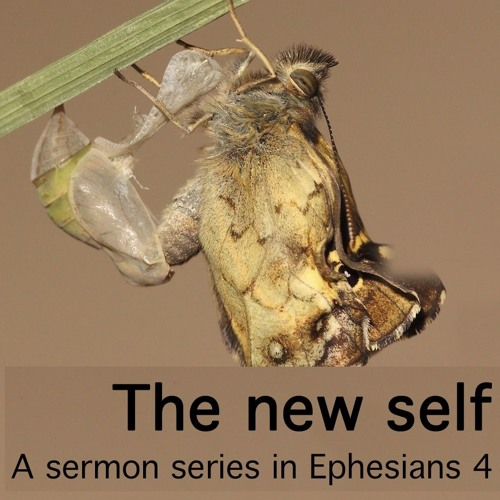 The new self: a sermon series in Ephesians 4