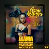 AronChupa, Little Sis Nora - Llama In My Living Room (TIM HEART Bootleg)