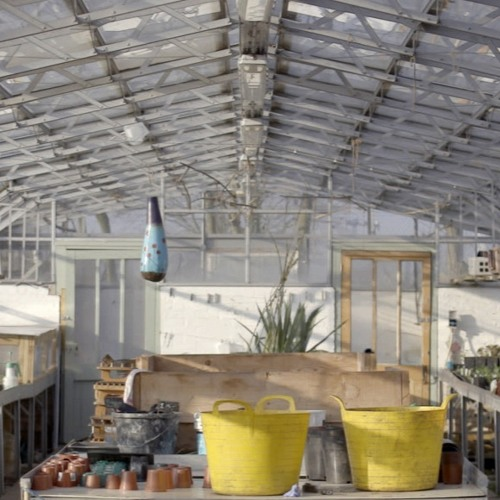 Volunteer voices: What makes Brockwell Park Community Greenhouses special?