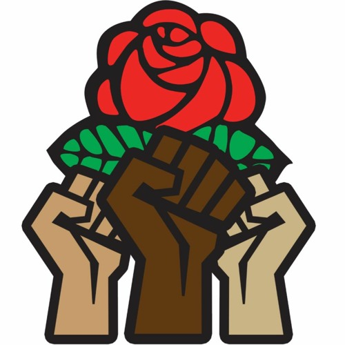 Ep. 22: Race, Class and DSA w/ Adolph Reed, Jr