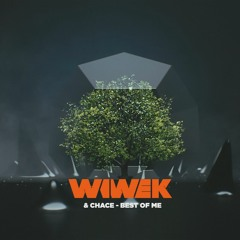 Wiwek & Chace - Best Of Me
