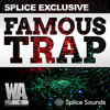 Download SPLICE EXCLUSIVE: Famous Trap Preview | 650+ 808 Drums, Presets & Kits! Mp3