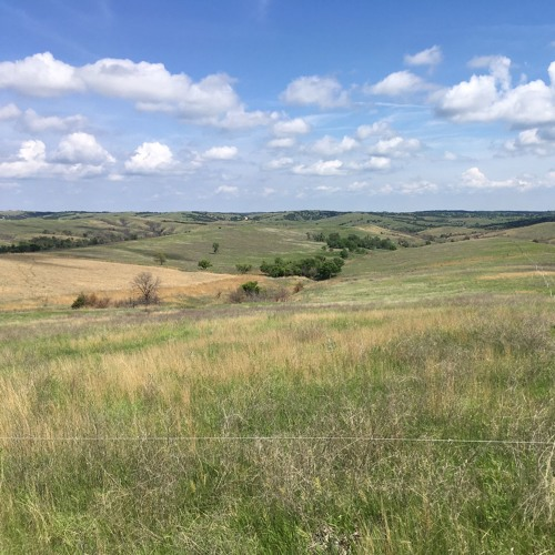 Episode 5: Nebraska's Unique Habitats