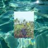 Indische Party - Khilaf ( Ukulele Cover )