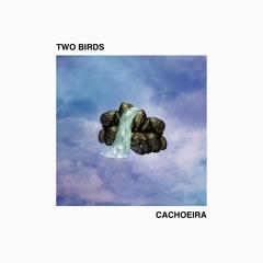 TWO BIRDS - Cachoeira