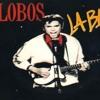 Ritchie Valens: La Bamba (C Harmonica)