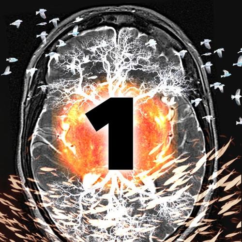 15: Consciousness I