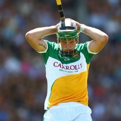 Liam Hogan Former Offaly Hurling Review Chairman