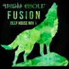 Irish Wolf Fusion - Deep House Music Mix 1