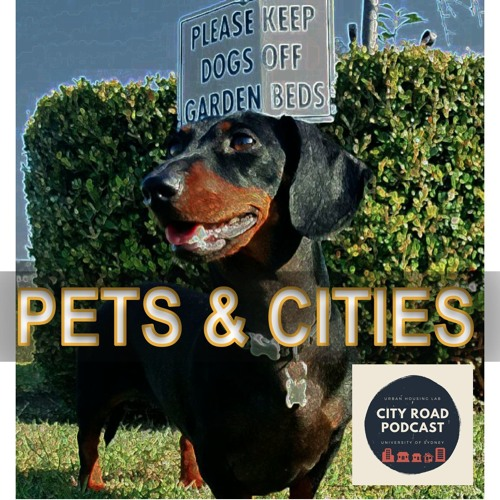 2. Pets and Cities