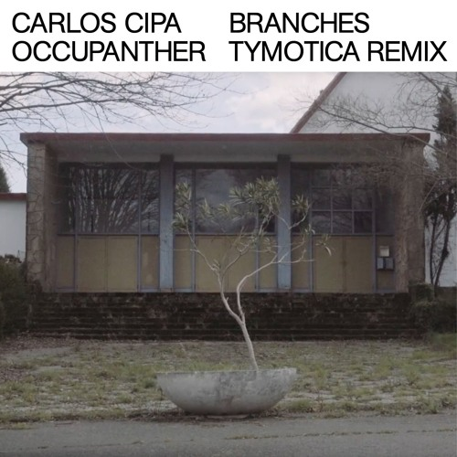 Carlos Cipa & Occupanther  - Branches (Tymotica Remix)
