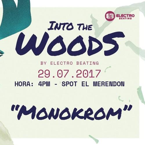 Monokrom Live @ Into The Woods 29 7 17
