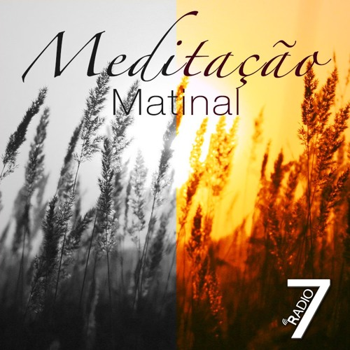 Meditação Matinal Observai As Aves 02.08.2017